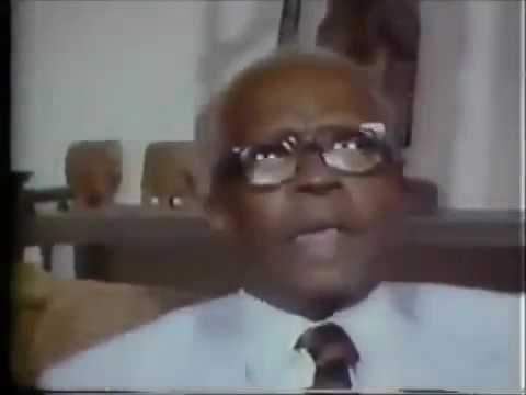 Unbiased Black History  Dr  Chancellor Williams on Why Africans Were Enslaved