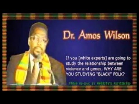 Dr. Amos Wilson: Change Your Consciousness