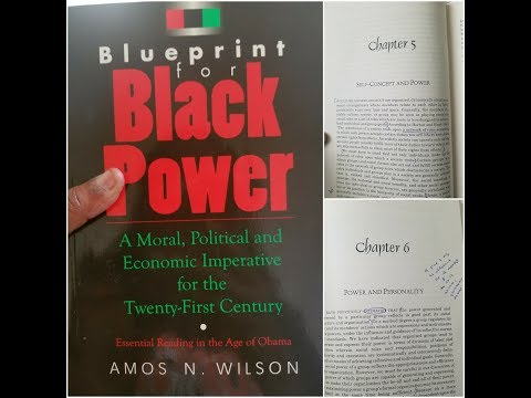 Dr Amos Wilson Blueprint For Black Power Chapters 5 and 6 – RAM Bookclub