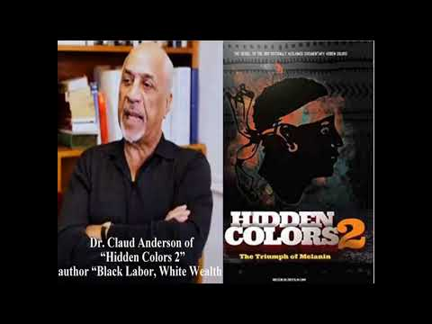 Dr  Claud Anderson Interview   The Black Agenda 2017 In The Trump Era   Michael Imhotep