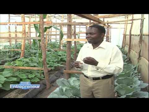 ENTREPRENEUR – Investing in Kenya's Agricultural Sectors