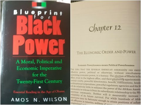 Dr Amos, Blueprint For Black Power Chapter 12 part 1 – RAM Bookclub