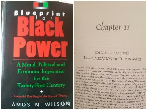 Bluebrint for black power the aware negro dr amos wilsons blueprint for black power chapter 11 ram bookclub malvernweather Gallery
