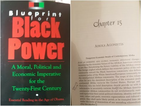 Dr. Amos Wilson, Blueprint For Black Power Chapter 15 – RAM Bookclub
