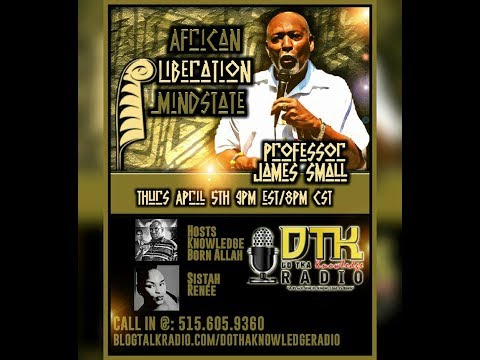 African Liberation Mindstate with Professor James Small