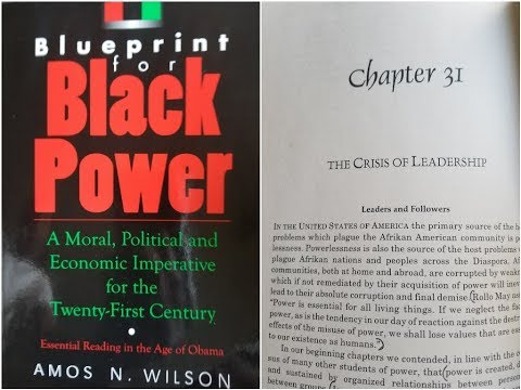 Bluebrint for black power the aware negro dr amos wilson blueprint for black power chapter 31 ram bookclub malvernweather Images