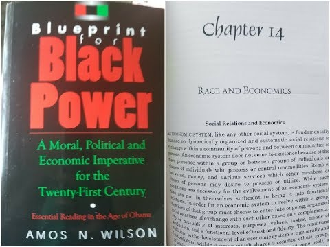 Bluebrint for black power the aware negro dr amos wilson blueprint for black power chapter 14 part 3 ram bookclub malvernweather Gallery