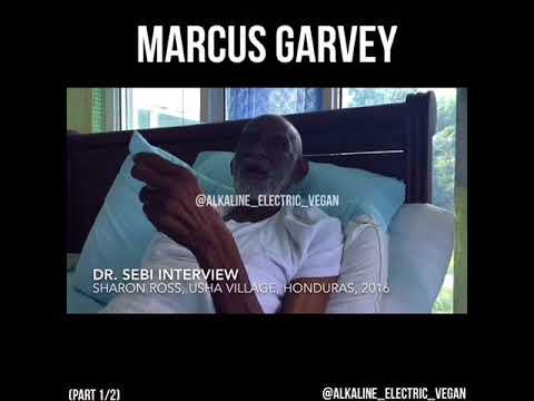 Dr. Sebi speaks on Marcus Garvey