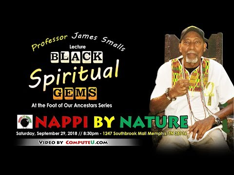 Professor James Smalls At Nappi By Nature 2018