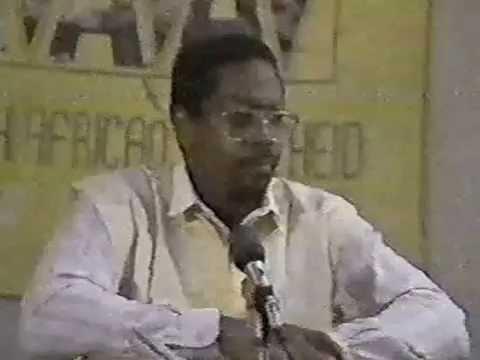 Amos Wilson The Development Of The Black Child