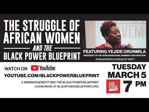 The Struggle of African Women and the Black Power Blueprint