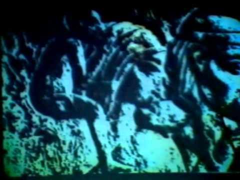 Diapositives Cheikh Anta Diop
