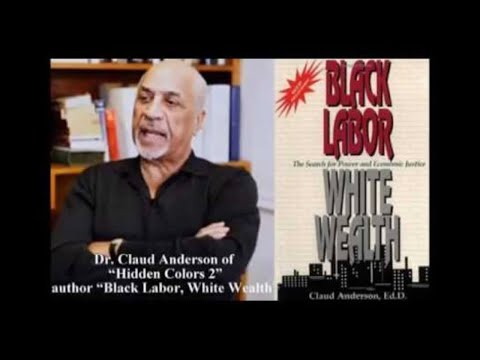 Why African Americans don't have economic power – Dr Claud Anderson