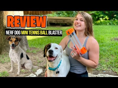 [REVIEW] Nerf Dog Mini Ball Launcher Unboxing Firing Test, Chrono & Review