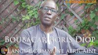 Boubacar Boris Diop, Langue commune africaine selon Cheikh Anta Diop